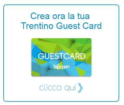 banner-guest-card